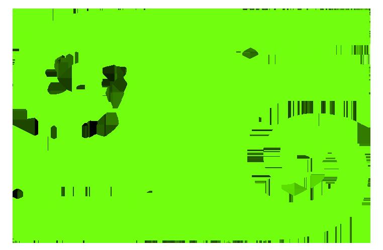 THE ADIGUN OGUNSANWO™ - BAHATI Symbol
